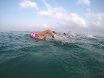 Swimm coachers open water swimming stock photography