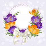Openwork card with wreath of beautiful crocuses Royalty Free Stock Photography