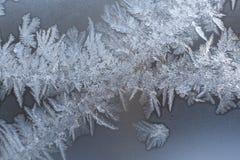 Openwork mroźny biały lodowaty wzór na zimy szklanej tafli Zdjęcie Stock