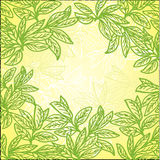 Openwork pattern of leaves Stock Photos