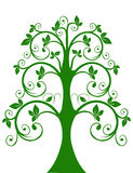 The openwork tree Royalty Free Stock Photo