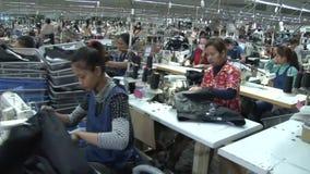 Operários do vestuário de matéria têxtil: Tipo movimento da zorra ao longo dos corredores dos trabalhadores video estoque