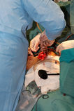 Operação cirúrgica no coração imagem de stock
