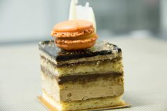 Opera cake with layers of chocolate ganache and coffee infused s. Delicious Petite Opera cake with layers of chocolate ganache and coffee infused sponge cake royalty free stock image