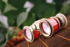 Opera glasses on the dark. Opera glasses on a dark bamboo napkin against fruits and green foliage Stock Photography