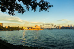 Opera house at sunrise across Farm Cove. Opera house harbour bridge and the stern of a cruise ship at sunrise from across farm cove. Copyspace royalty free stock photography