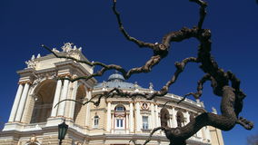 Opera in Odessa. Opera house in odessa with trees in front Stock Image