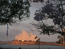 Operahouse in Sydney. The famous building created by Danish architect Jørn Utzon was build  in Sydney harbour near the place where the fouders of Australia went Stock Photos