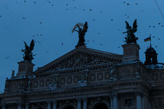 Operahuis in Lviv in de nacht Royalty-vrije Stock Foto
