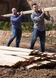 Operai che sistemano il legname della costruzione all'azienda agricola Fotografie Stock Libere da Diritti