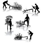operai di silvicoltura Immagine Stock
