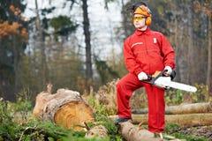 Operaio del boscaiolo con la sega a catena nella foresta Fotografie Stock