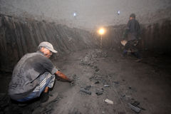 Operaio del carbone vegetale di Mangroove Immagine Stock