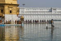 Operaio sikh che raccoglie immondizia, tempiale dorato Fotografie Stock Libere da Diritti