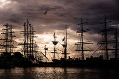 Operationen Gdynia seglar royaltyfri foto