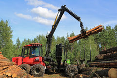 Operator Stacking up Logs with Komatsu 830.3 Forestry Forwarder
