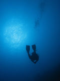 Operatore subacqueo 01 Fotografie Stock