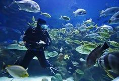 Operatore subacqueo Fotografia Stock Libera da Diritti