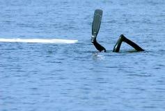 Operatore subacqueo Immagini Stock Libere da Diritti