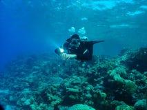Operatore subacqueo al giardino di Sabina Fotografia Stock Libera da Diritti
