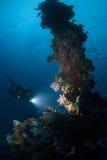 Operatore subacqueo con indicatore luminoso sull'albero di andata Fotografia Stock Libera da Diritti
