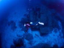 Operatore subacqueo con la scogliera caral immagini stock libere da diritti