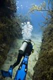 Operatore subacqueo con le alette blu Fotografia Stock Libera da Diritti