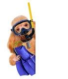 Operatore subacqueo del cane. fotografie stock