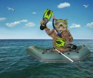 Operatore subacqueo del gatto che va alla deriva in un gommone 2 immagini stock