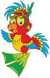 Operatore subacqueo del pappagallo illustrazione di stock