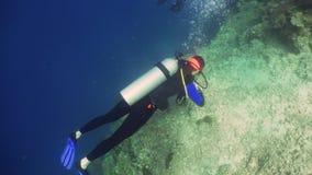 Operatore subacqueo di scuba subacqueo stock footage