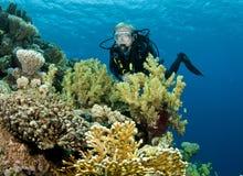 Operatore subacqueo di scuba maschio immagine stock