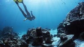 Operatore subacqueo di signora video d archivio