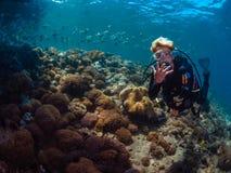 Operatore subacqueo di signora con la scuola dei diamondfish fotografia stock