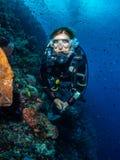 Operatore subacqueo di signora e parete spettacolare di corallo fotografia stock