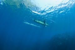 Operatore subacqueo e barca immagine stock