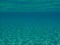 Operatore subacqueo e pesci fotografia stock libera da diritti
