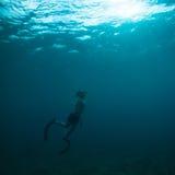 Operatore subacqueo libero che viene ad affiorare Fotografie Stock Libere da Diritti