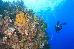 Operatore subacqueo - ragazza subacquea fotografia stock libera da diritti