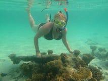 Operatore subacqueo subacqueo in Oceano Indiano Immagini Stock