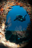 Operatore subacqueo sul naufragio Fotografia Stock Libera da Diritti