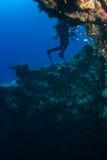 Operatore subacqueo sul reaf immagini stock libere da diritti
