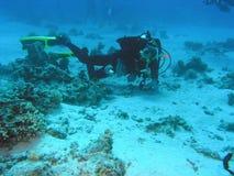 Operatore subacqueo sulla scogliera immagini stock libere da diritti