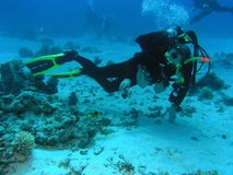 Operatore subacqueo sulla scogliera Fotografie Stock