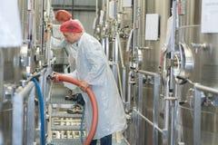 Operatori della fabbrica che collegano tubo flessibile al tino fotografia stock