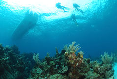 Operatori subacquei che salgono. Immagini Stock