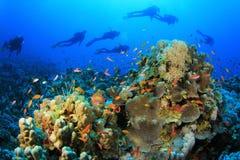 Operatori subacquei di scuba Immagini Stock