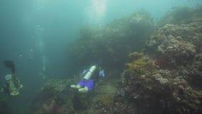 Operatori subacquei di scuba subacquei Filippine, Mindoro stock footage