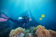 Operatori subacquei e barriera corallina Fotografia Stock Libera da Diritti