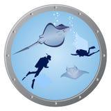 Operatori subacquei e stingrays Fotografia Stock Libera da Diritti